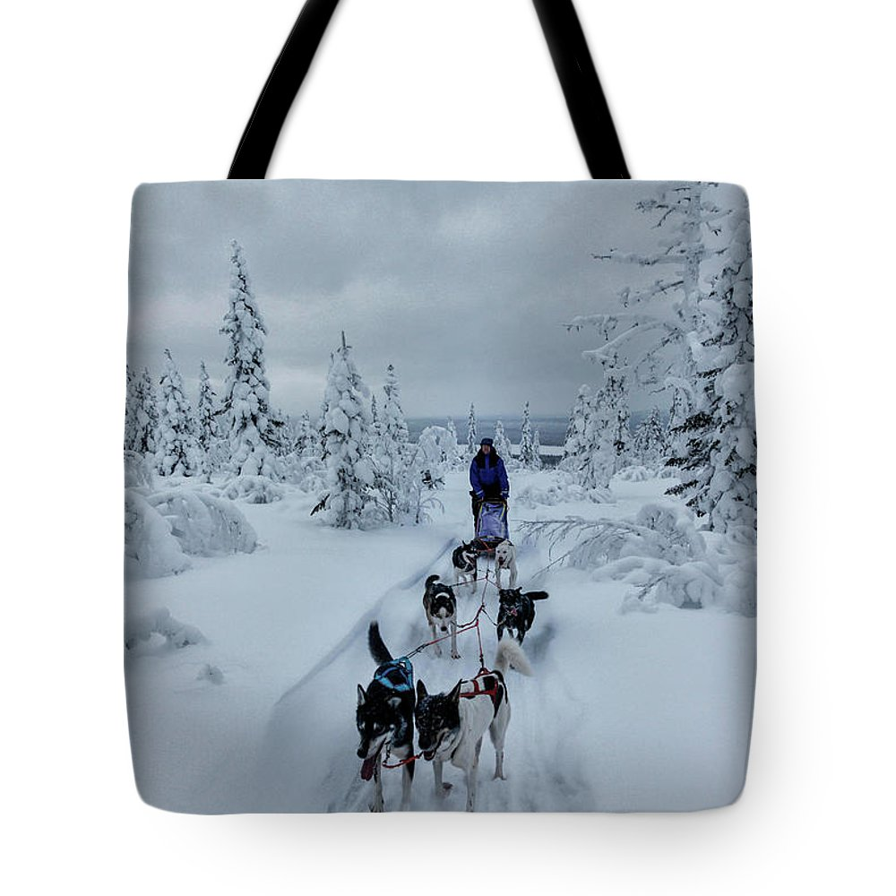 Working Animals Tote Bag featuring the photograph Dogsledding Through The Forest by Johnathan Ampersand Esper