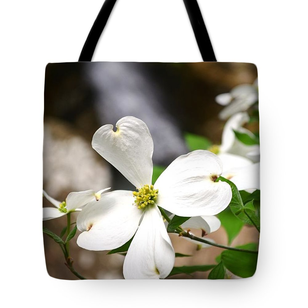 Dogwood Tote Bag featuring the photograph Dogwood Blooms by Deanna Cagle