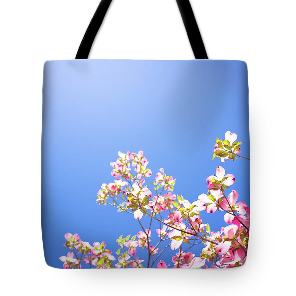 Dogwood Tote Bag featuring the photograph Dogwood Flowers by Marser