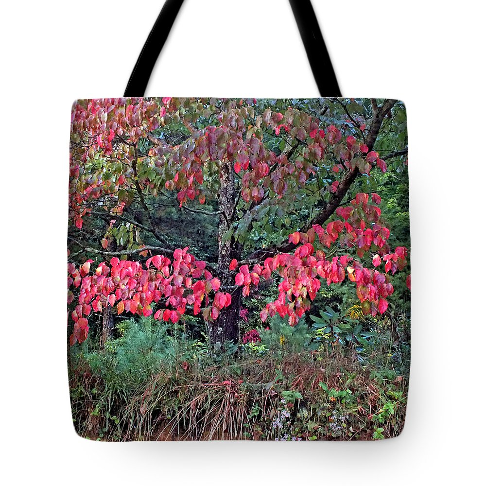Duane Mccullough Tote Bag featuring the photograph Dogwood Leaves In The Fall by Duane McCullough