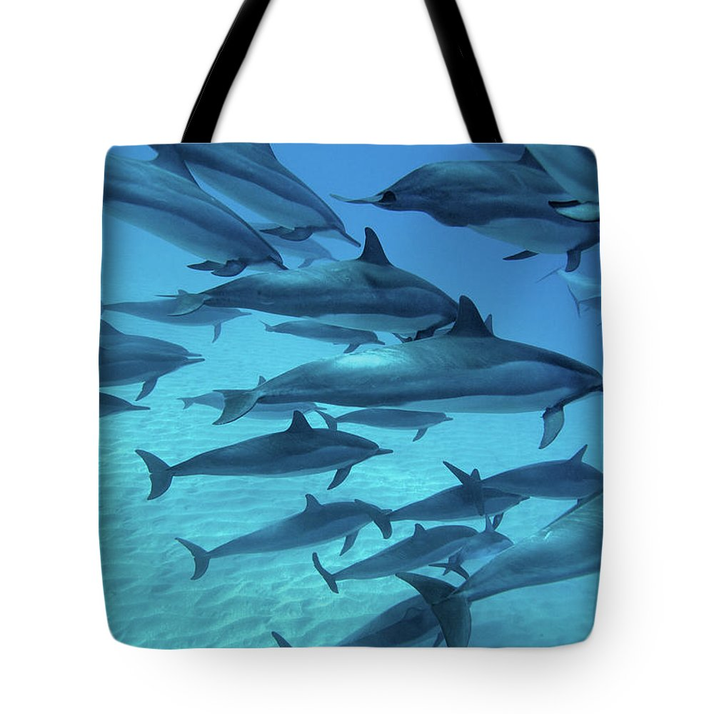 Underwater Tote Bag featuring the photograph Dolphins Spinners by M Swiet Productions