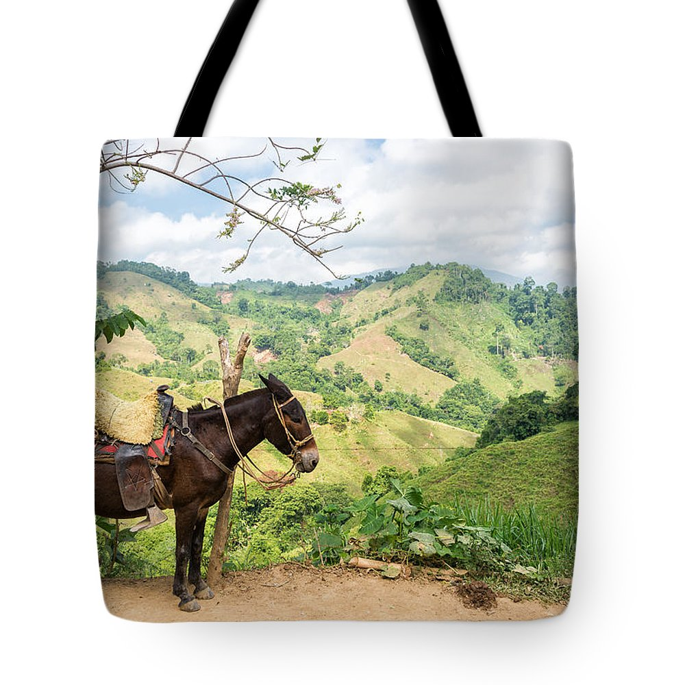 Donkey Tote Bag featuring the photograph Donkey And Hills by Jess Kraft