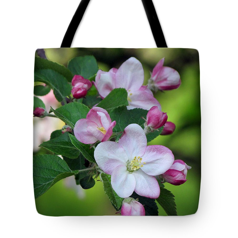 Door County Tote Bag featuring the photograph Door County Apple Blossoms by David T Wilkinson