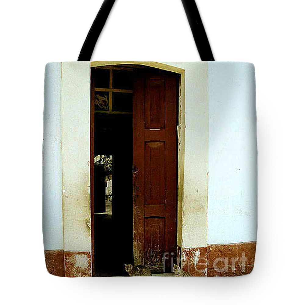 Cats Tote Bag featuring the photograph Dos Puertas Con Dos Gatos by Kathy McClure