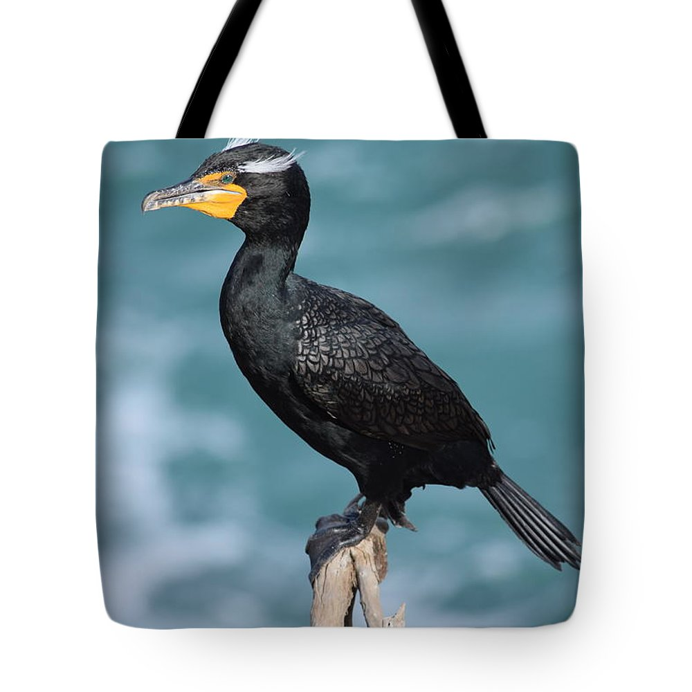 Double Crested Cormorant Tote Bag featuring the photograph Double Crested Cormorant by Eric Johansen