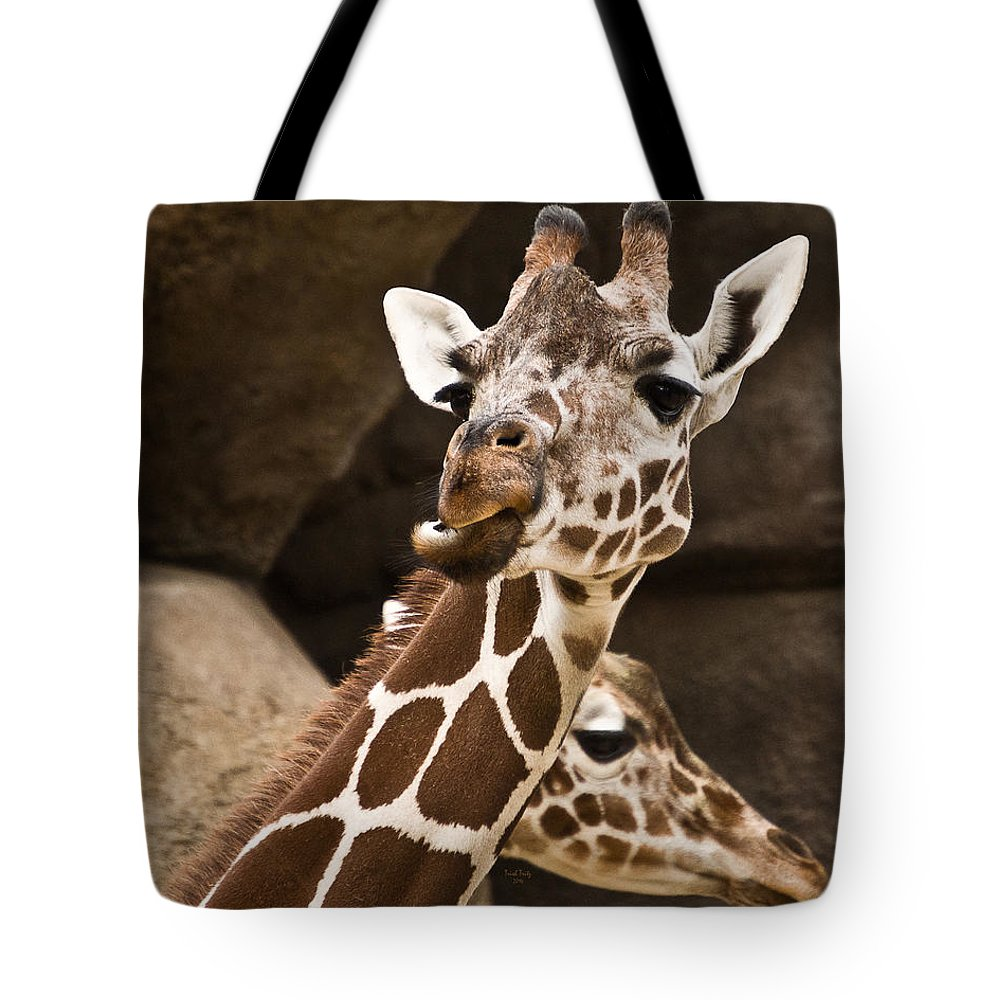 Giraffe Tote Bag featuring the mixed media Double Header by Trish Tritz