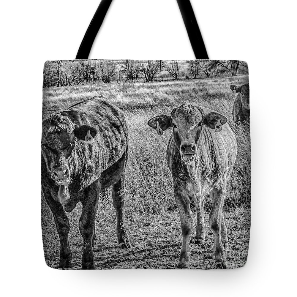 Cows Tote Bag featuring the photograph Double Raspberries by Toma Caul