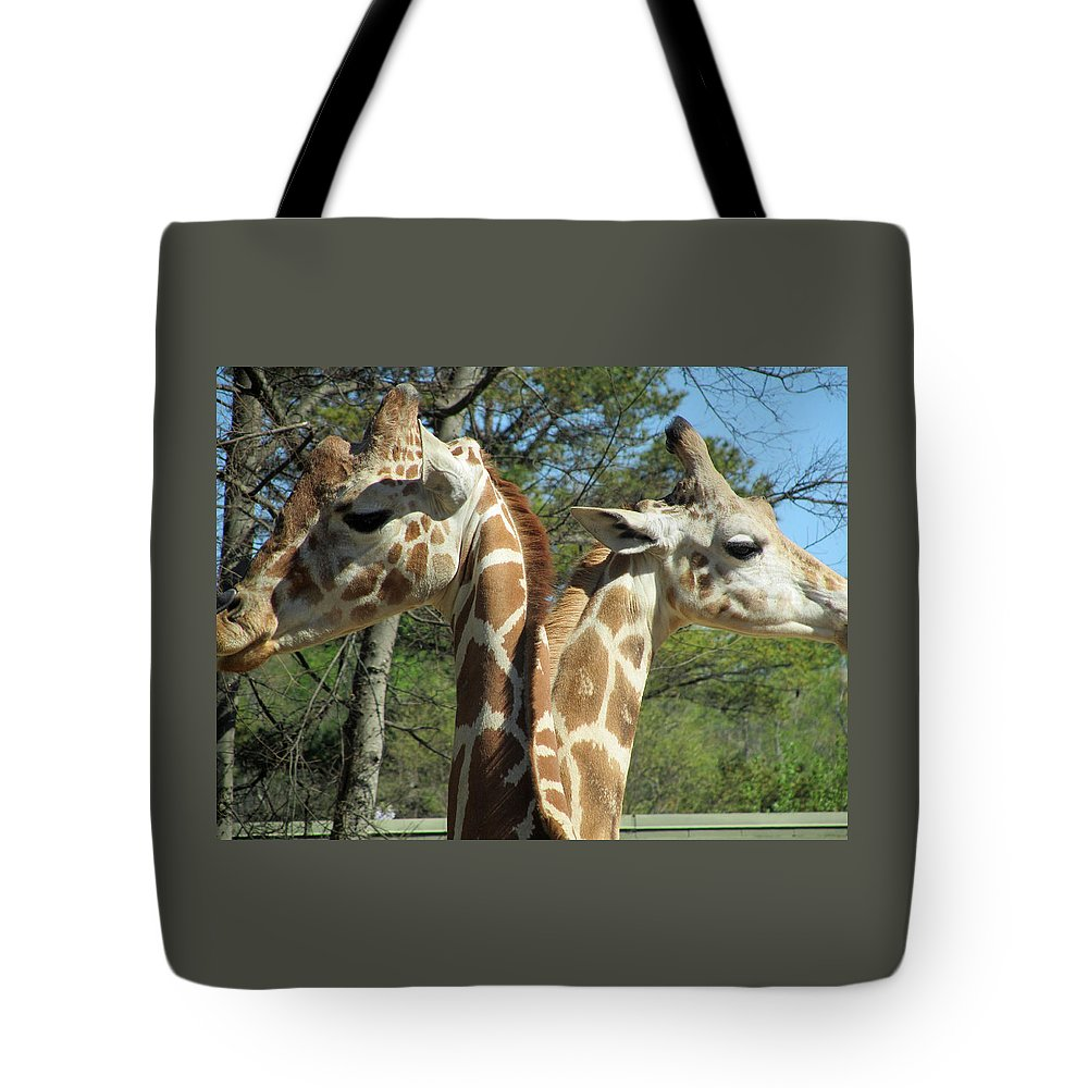 Giraffes Tote Bag featuring the photograph Giraffes With A Twist by Sandra Reeves