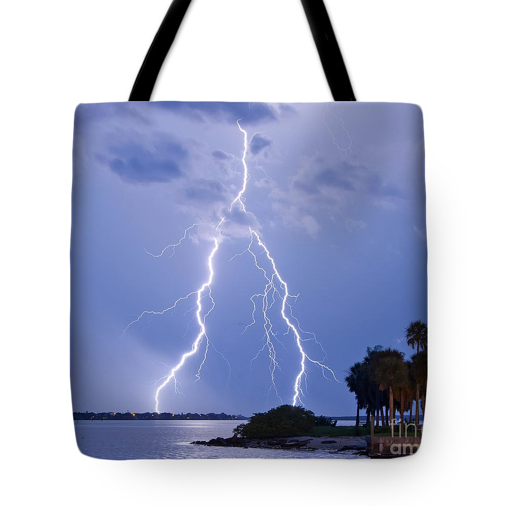 Florida Tote Bag featuring the photograph Double Trouble by Stephen Whalen