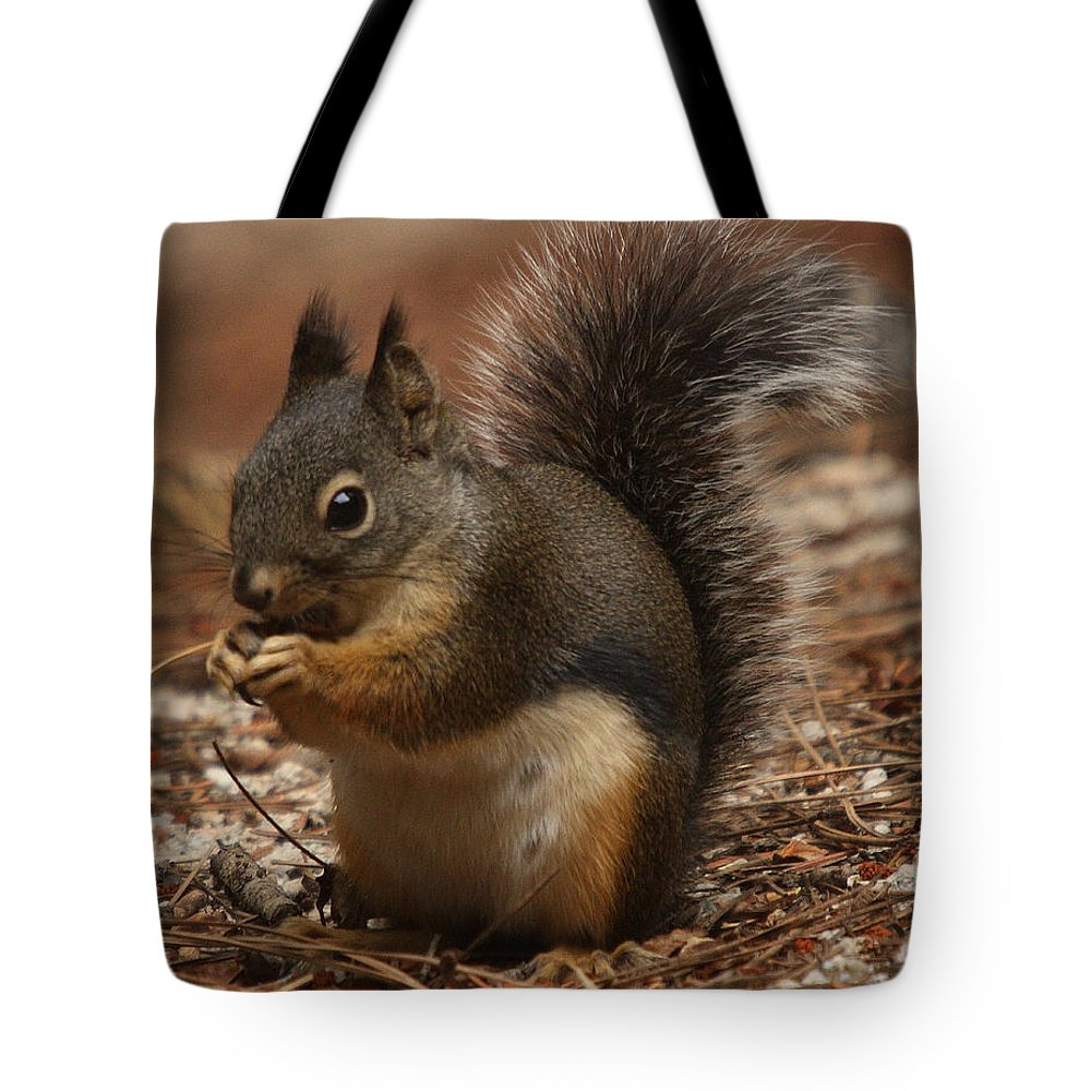 Nature Tote Bag featuring the photograph Douglas's Squirrel by David Salter