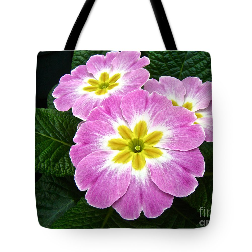 Primrose Tote Bag featuring the photograph Down On Primrose Lane by Mother Nature
