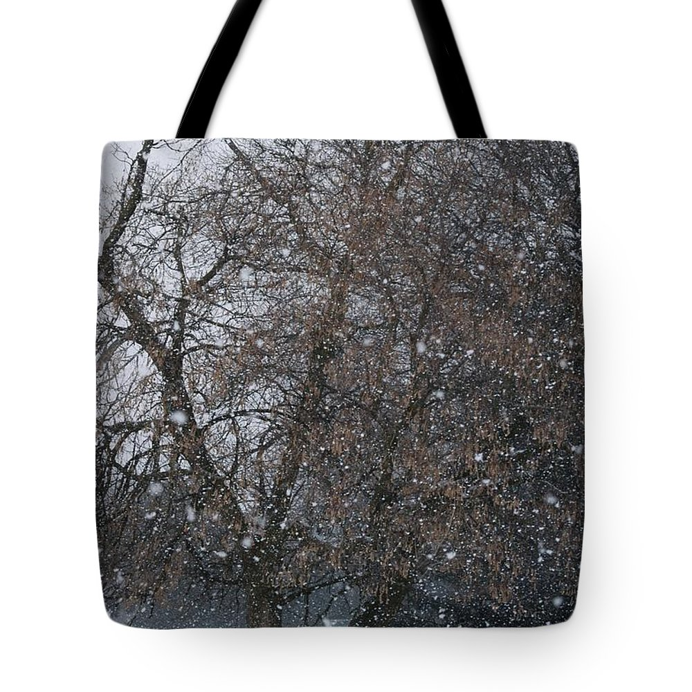 Snow Tote Bag featuring the photograph Downy Flake by Joseph Yarbrough