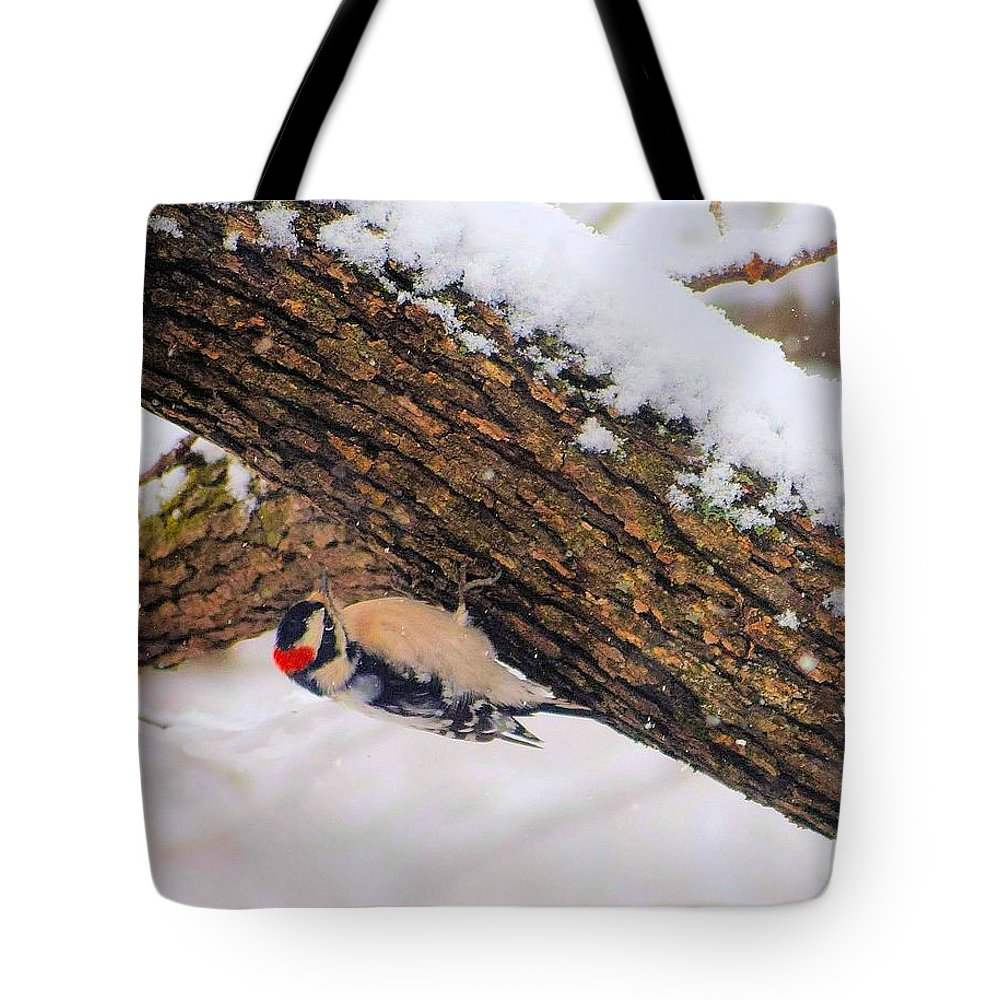 Downy Tote Bag featuring the photograph Downy Looking For Bugs by Janette Boyd