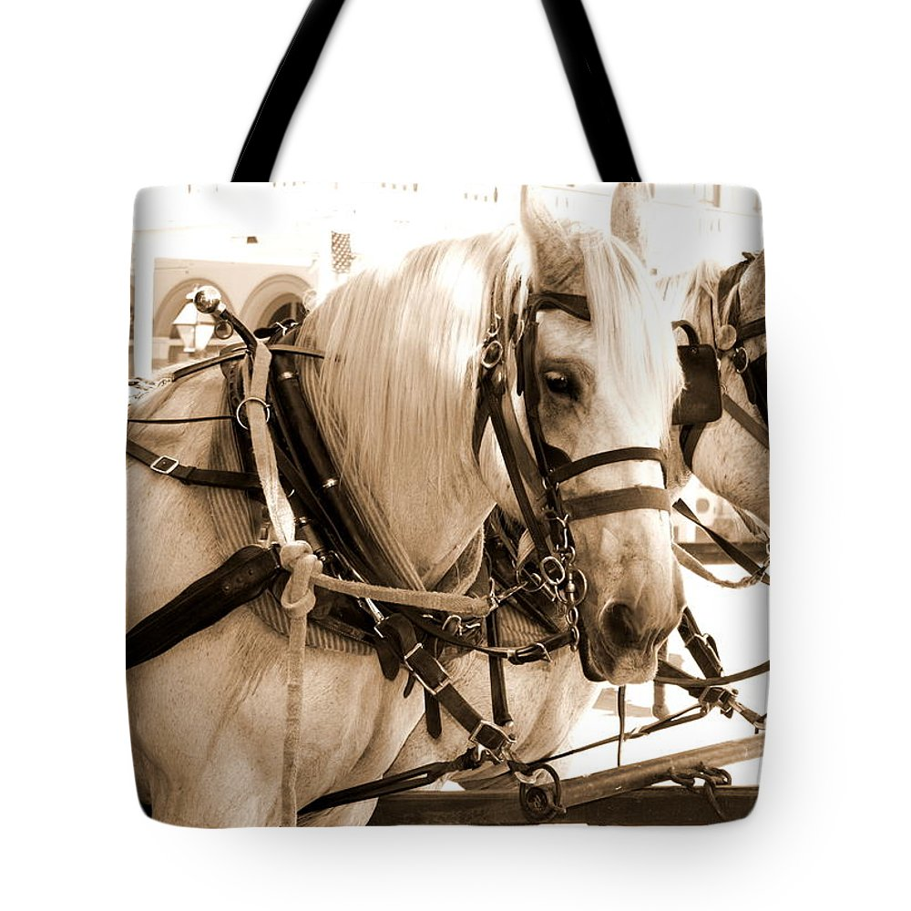 Horses Tote Bag featuring the photograph Draft Horses Enjoy A Day In Old Sacramento by Sally Bauer