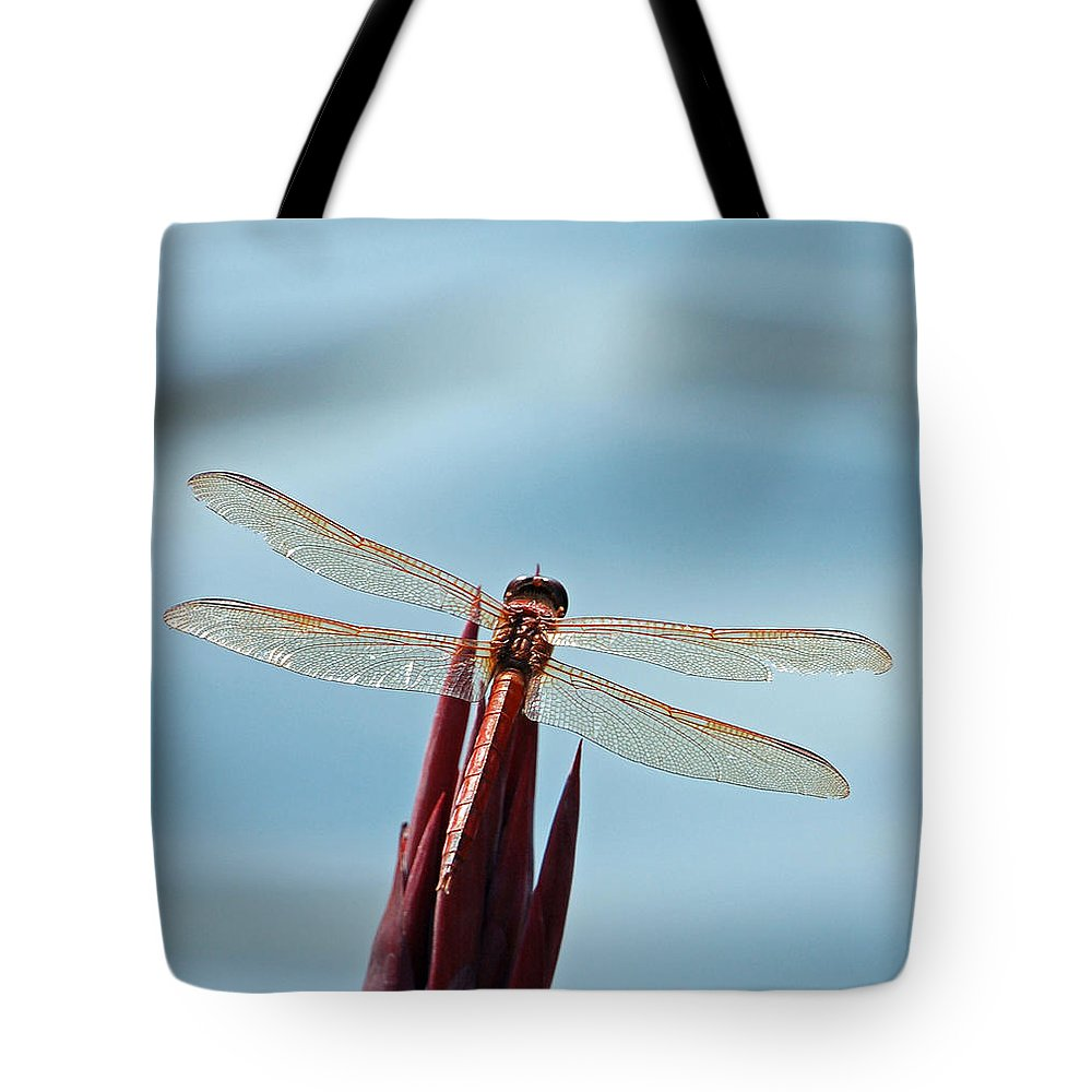 Dragonfly Tote Bag featuring the photograph Dragonfly Days by Suzanne Gaff