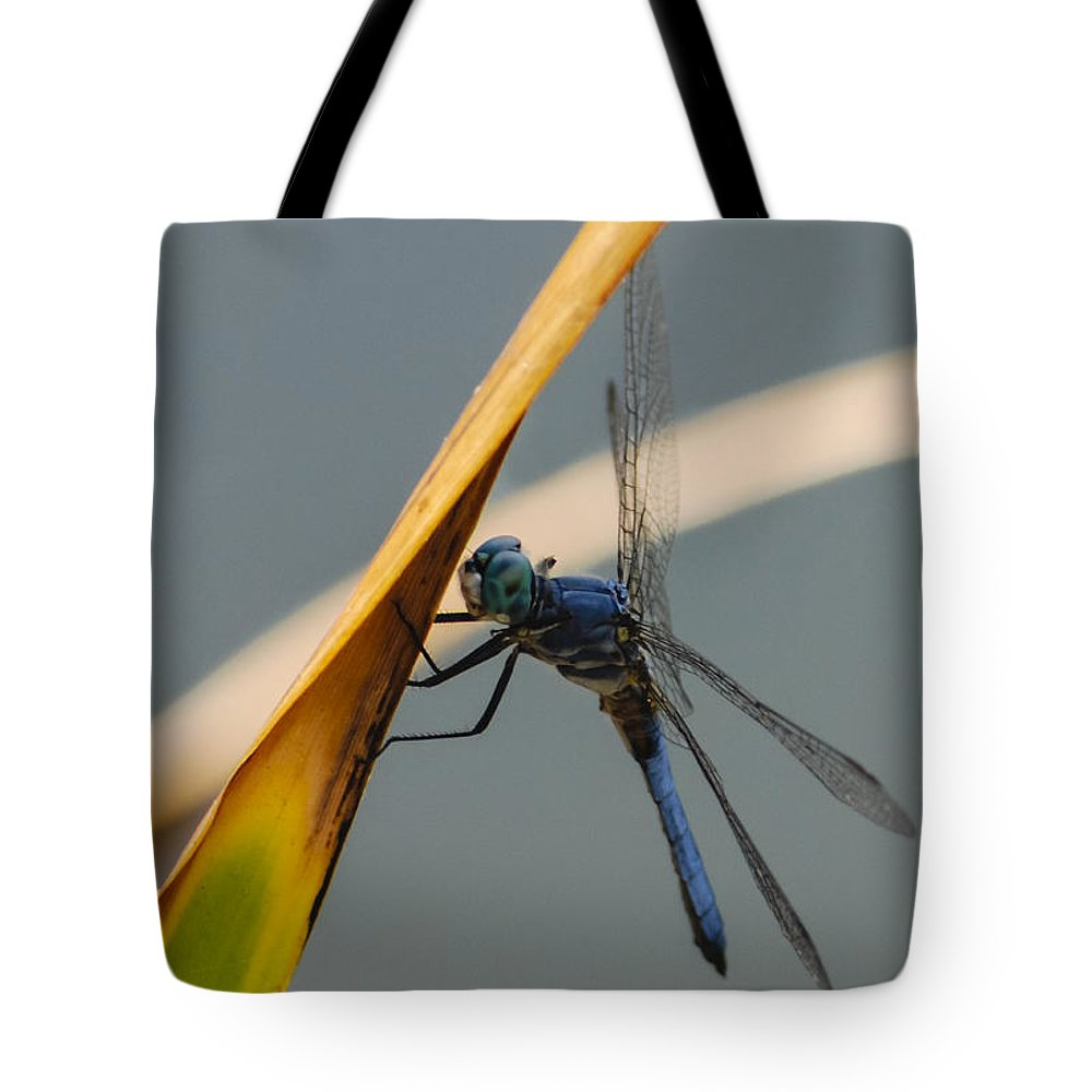 Dragonfly Tote Bag featuring the photograph Dragonfly by Dennis Reagan