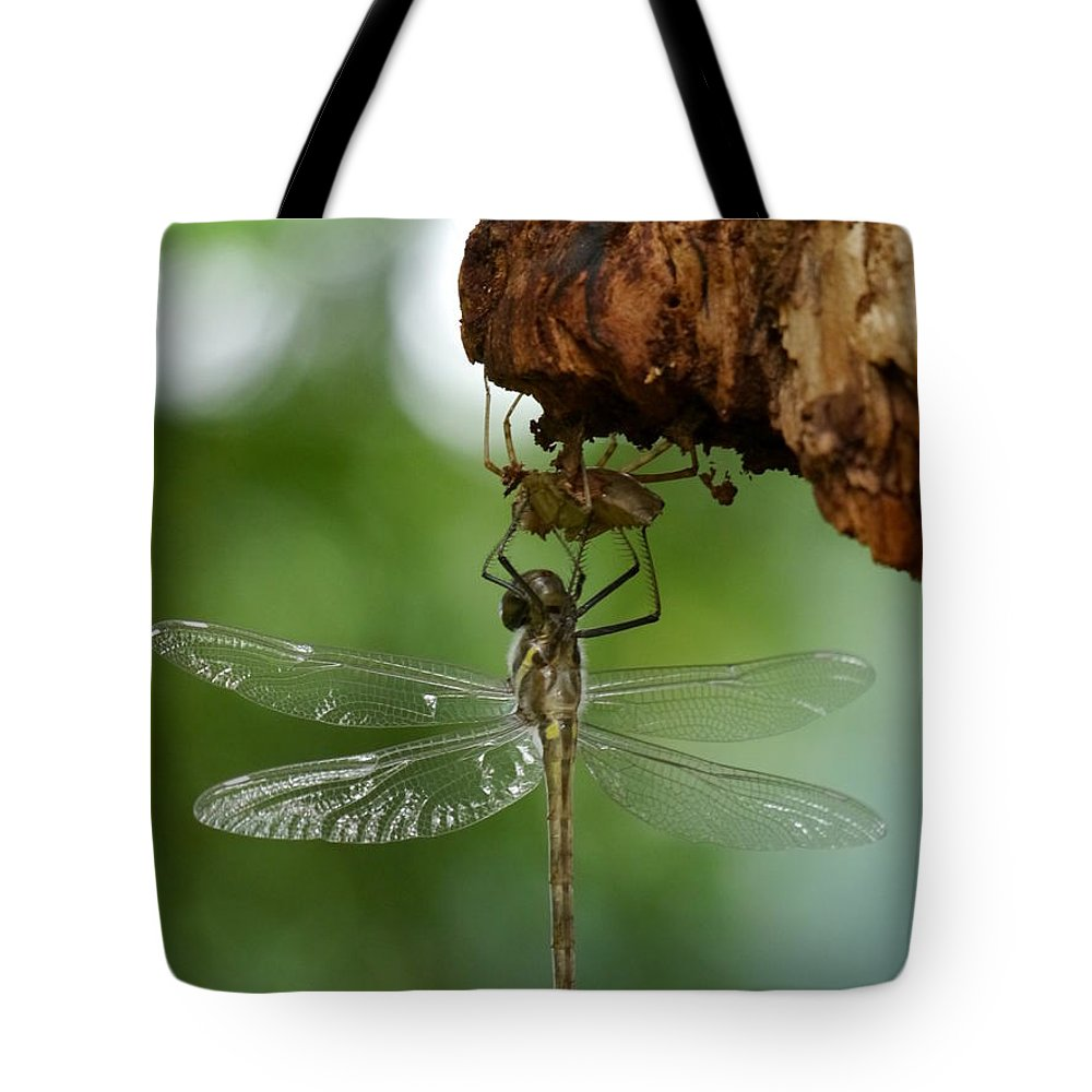 Jane Ford Tote Bag featuring the photograph Dragonfly by Jane Ford