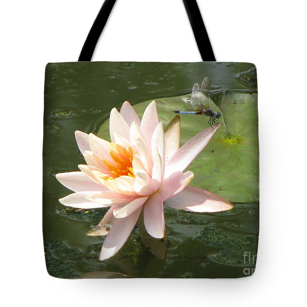 Dragon Fly Tote Bag featuring the photograph Dragonfly Landing by Amanda Barcon