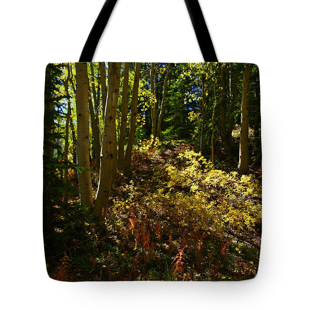 Drawn In Tote Bag featuring the photograph Drawn In Vertical by Jeremy Rhoades