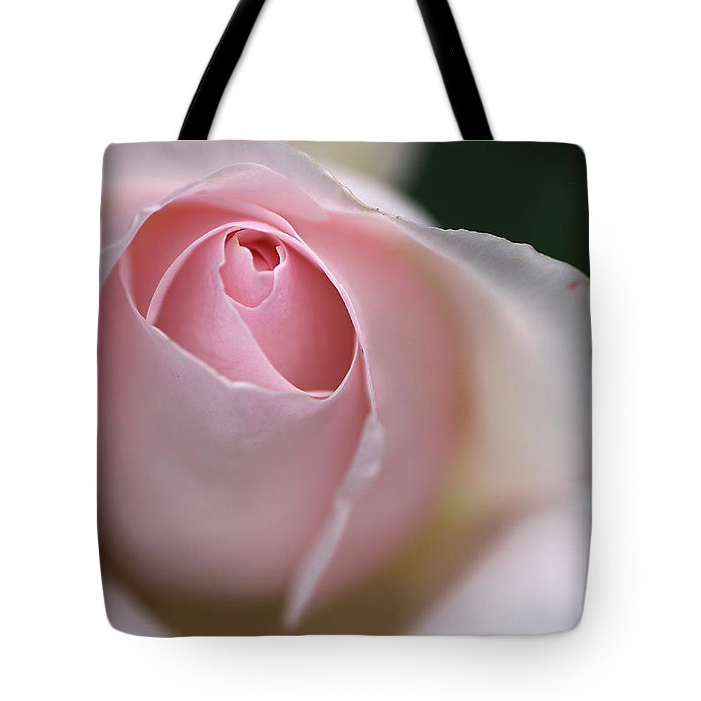 Rose Tote Bag featuring the photograph Dreamy Rose by Joy Watson