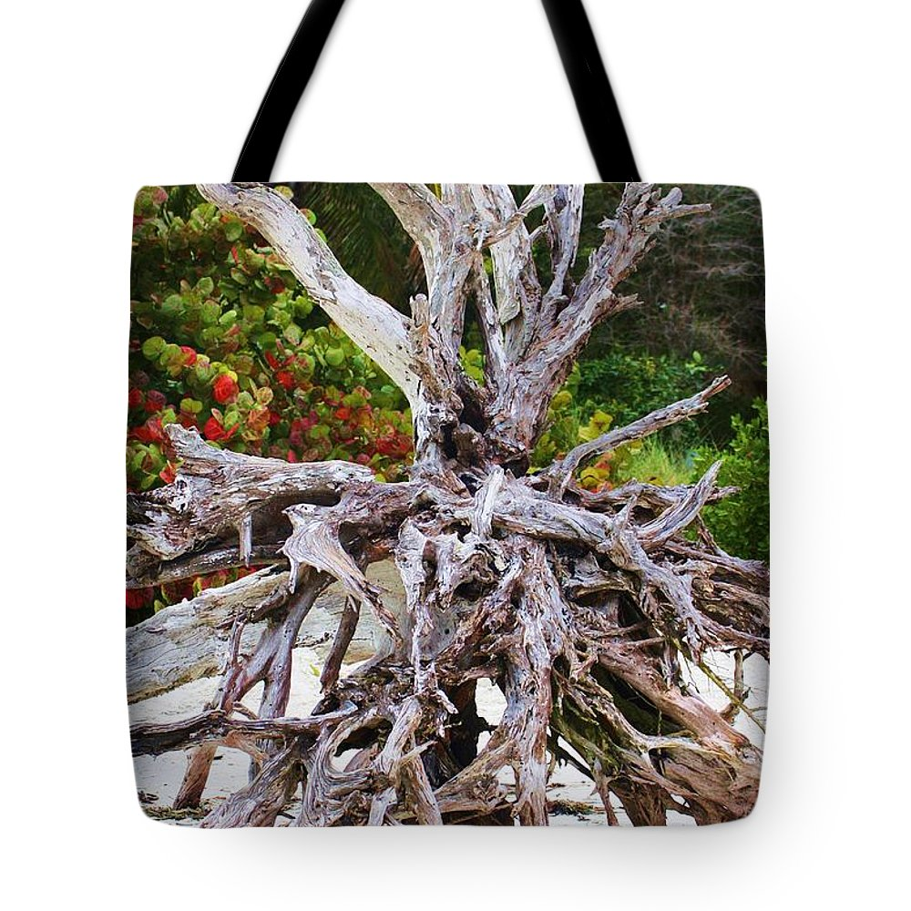 Handsome Tote Bag featuring the photograph Drifted Away by Chuck Hicks