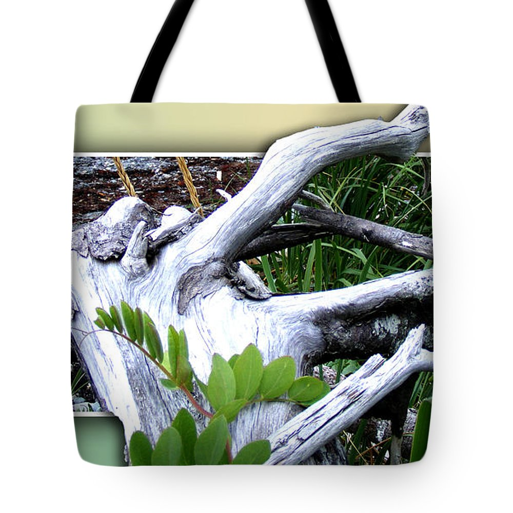 Driftwood Tote Bag featuring the photograph Driftwood Escape by Barbara Griffin