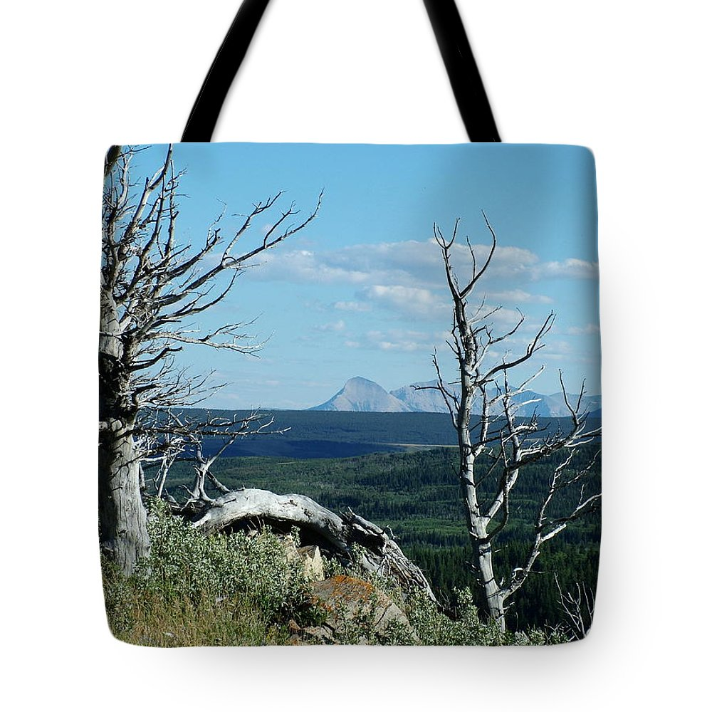 Gnarled Trees Tote Bag featuring the photograph Gnarled Trees And Divide Mountain by Tracey Vivar