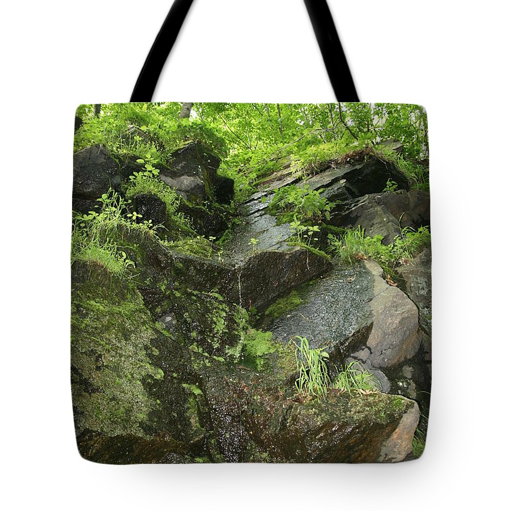 Landscape Tote Bag featuring the photograph Dripping by Neal Eslinger