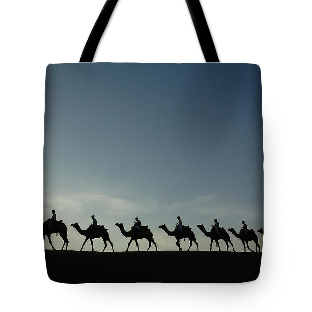 Backlit Tote Bag featuring the photograph Dromedary Camels In Thar Desert by Pete Oxford