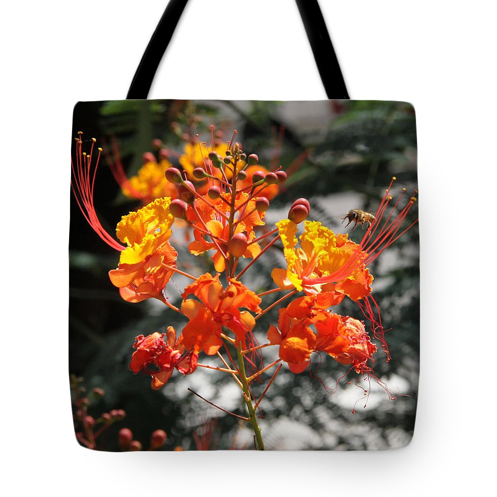 Bee Tote Bag featuring the photograph Dropping In by Paul Anderson