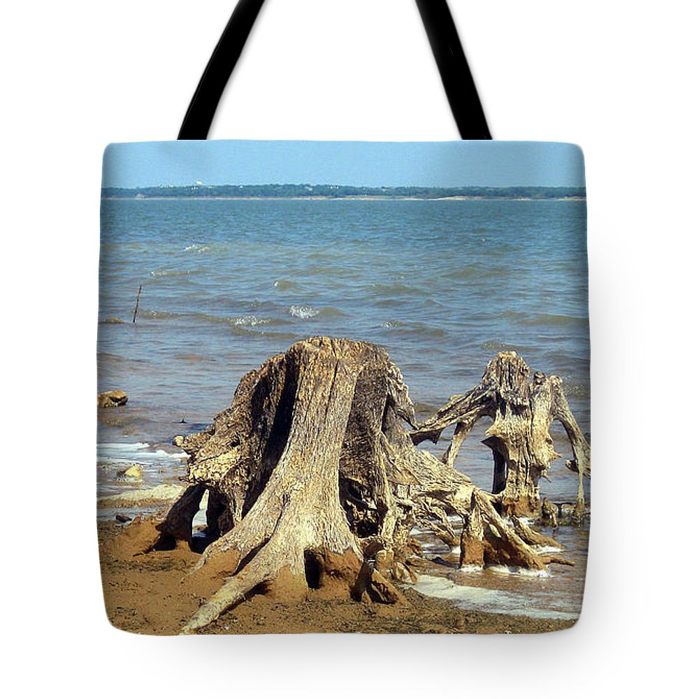 Texas Tote Bag featuring the photograph Drought In Texas by Jack Thomas