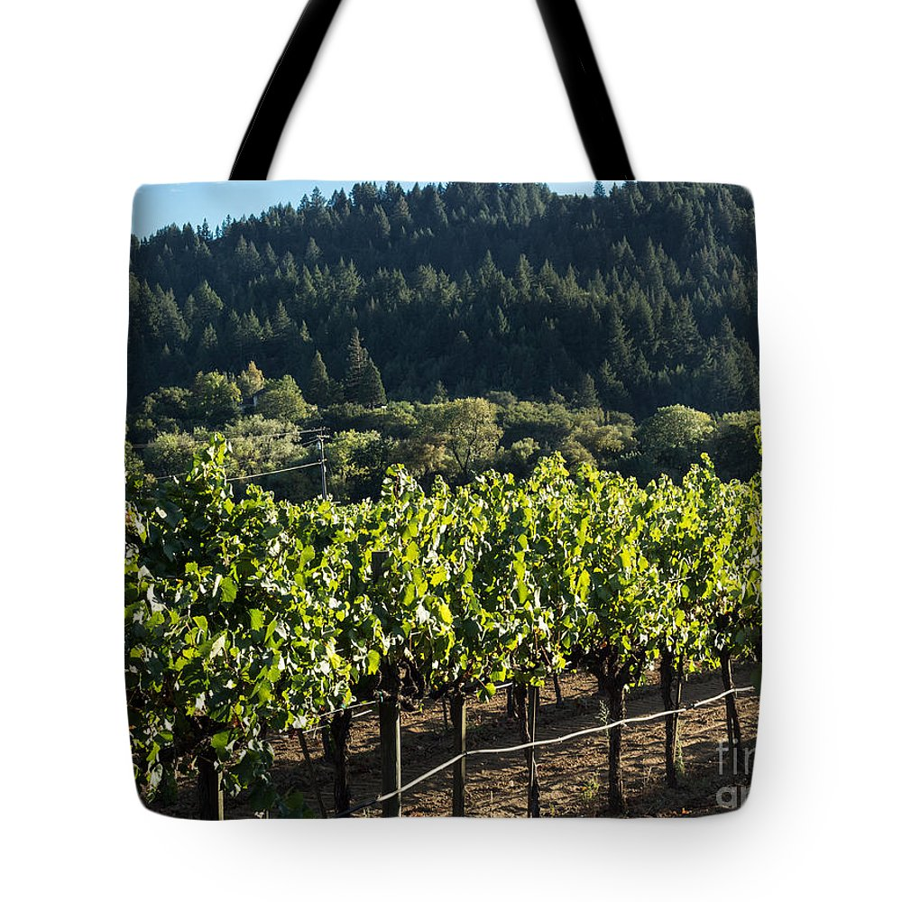 Vineyard Tote Bag featuring the photograph Dry Creek Road Vineyard by Suzanne Luft