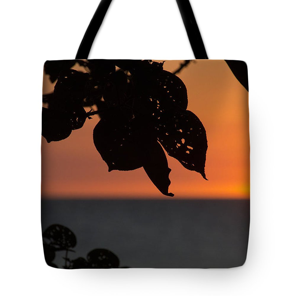 Dry Season Sunset Tote Bag featuring the photograph Dry Season Sunset by Douglas Barnard