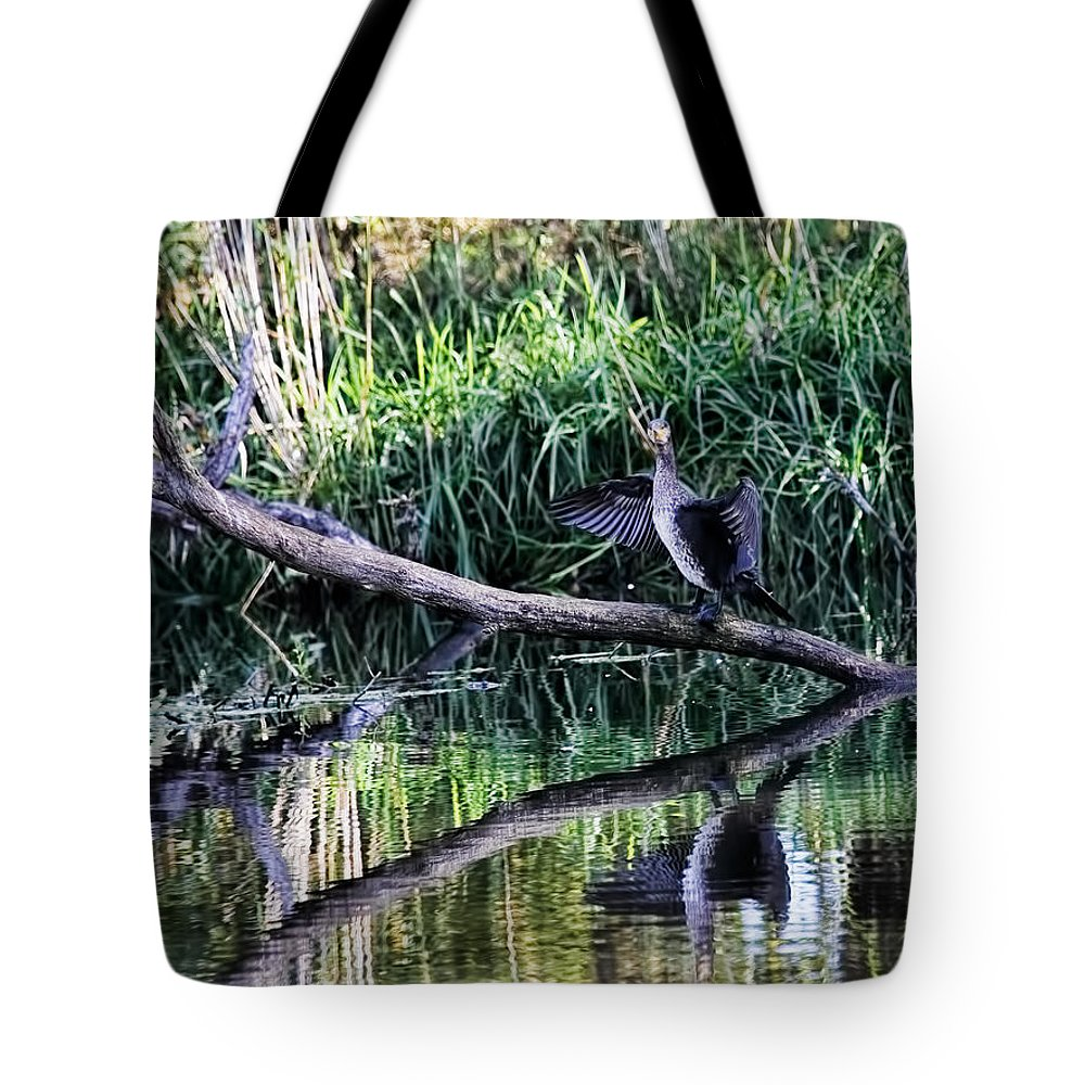 Drying Cormorant Tote Bag featuring the photograph drying cormorant- Black bird sitting on log over water by Leif Sohlman