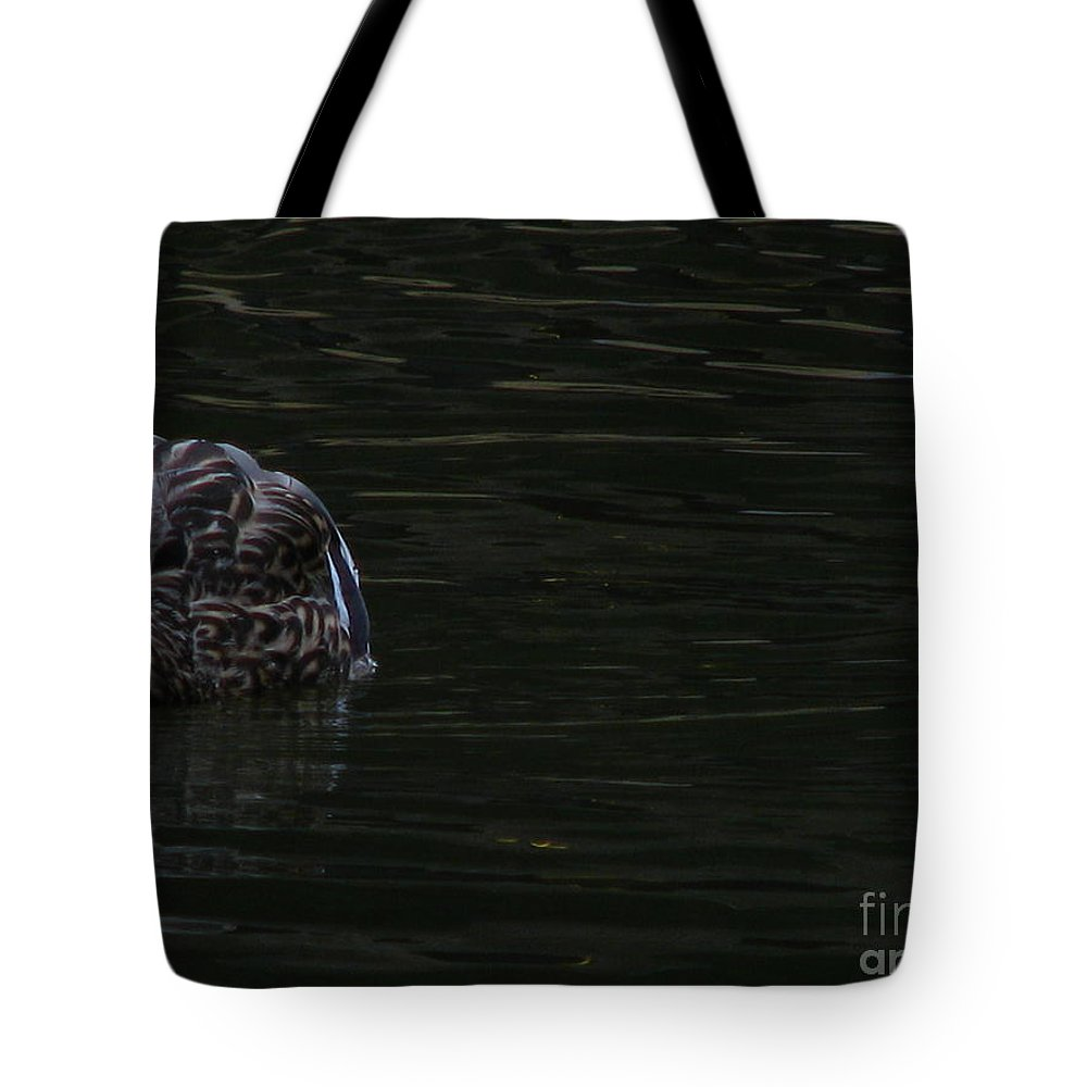 Duck Tote Bag featuring the photograph Duck by Greg Patzer