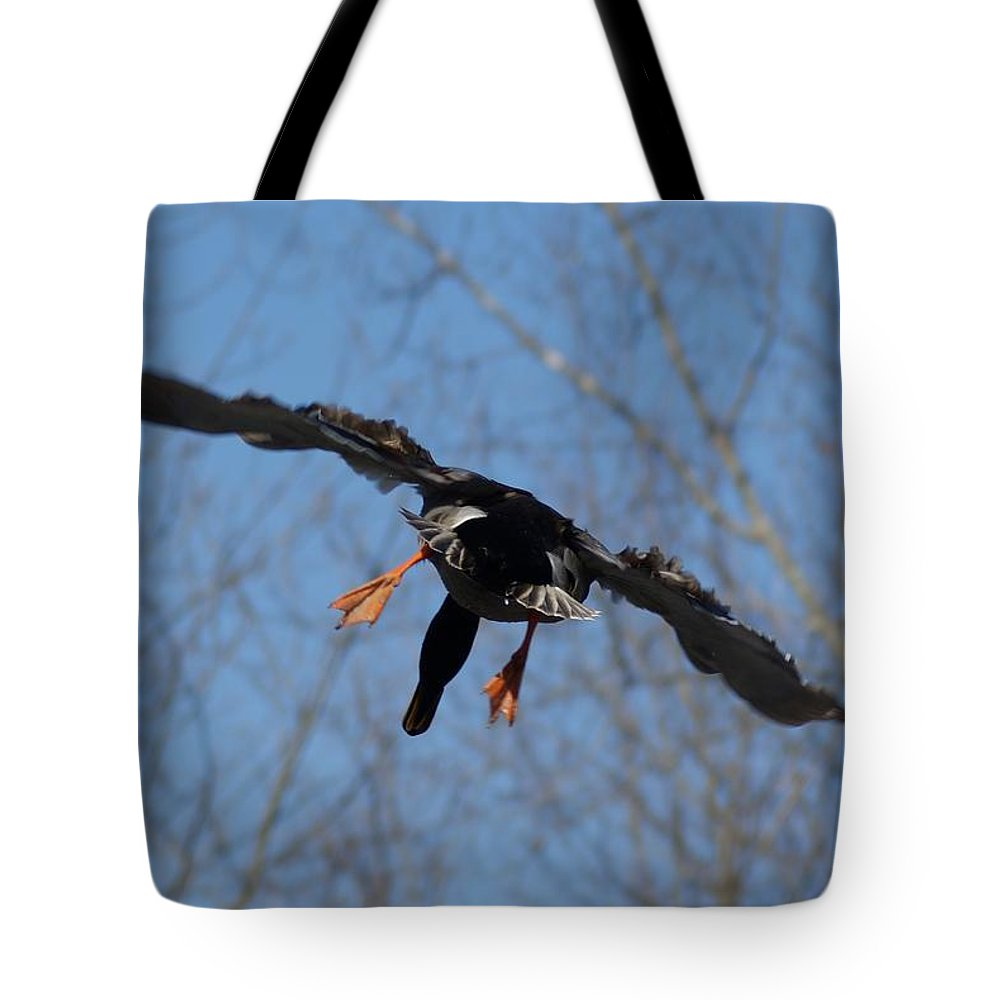 Duck Tote Bag featuring the photograph Duck In Flight by Joe Faherty