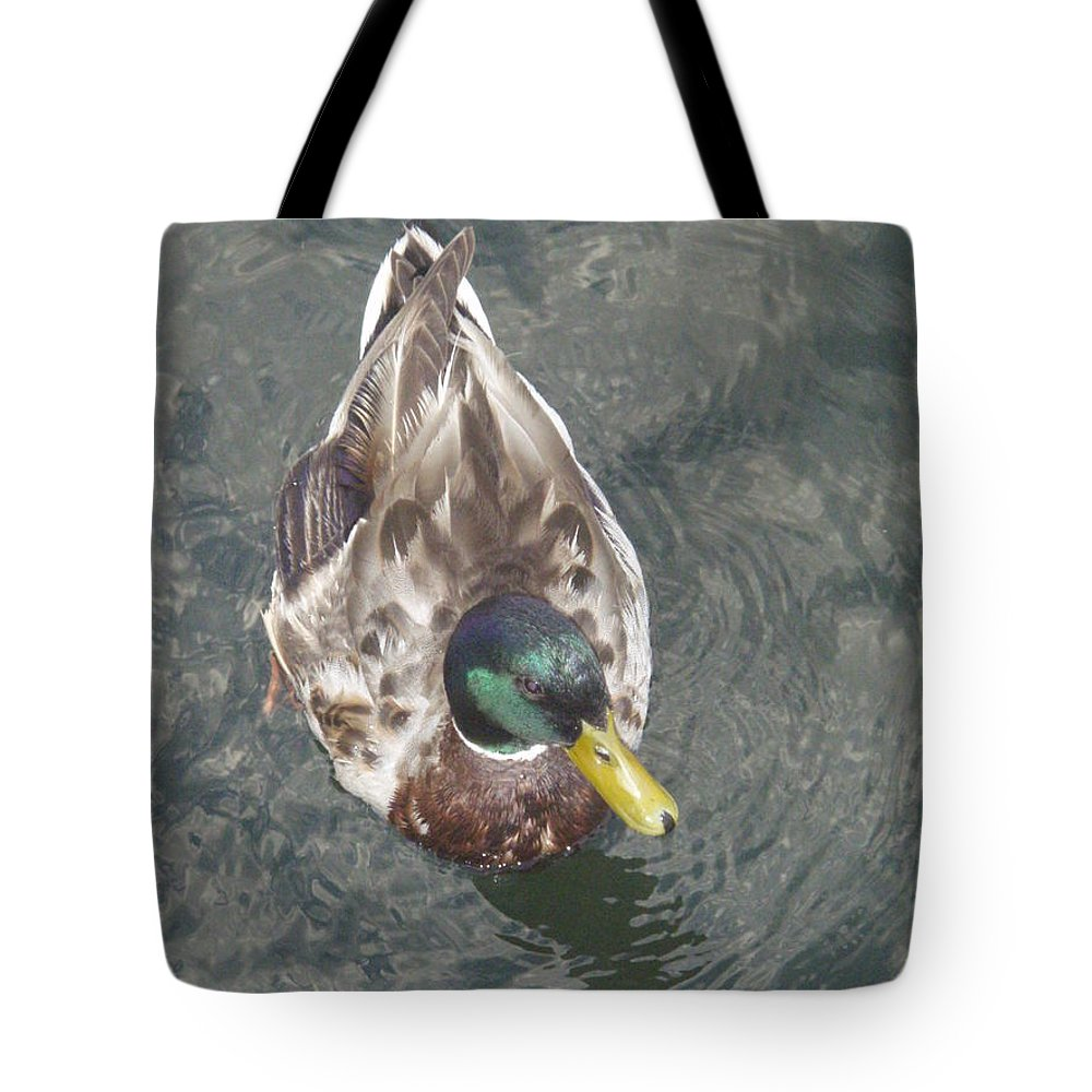 Duck Tote Bag featuring the photograph Duck by Robert Nickologianis