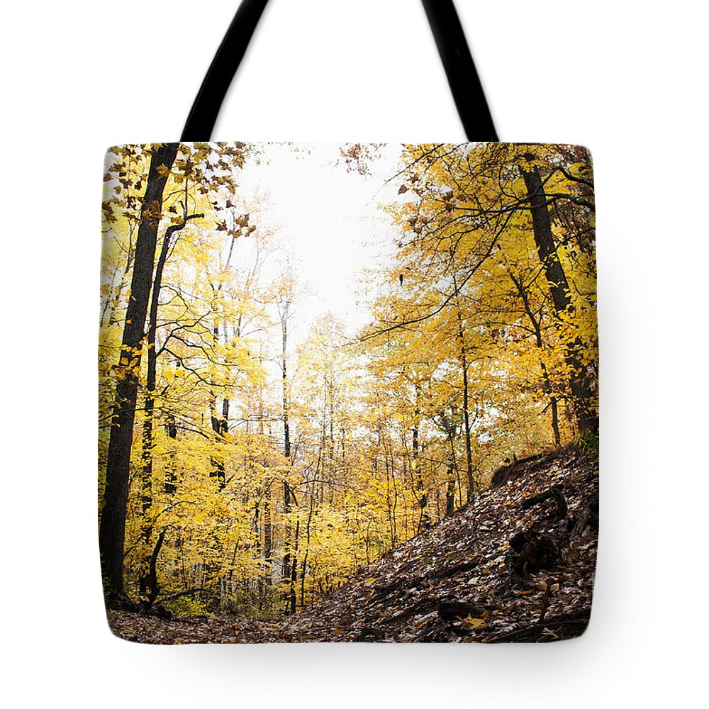 Dunes Tote Bag featuring the photograph Dune Land Forest by Verana Stark