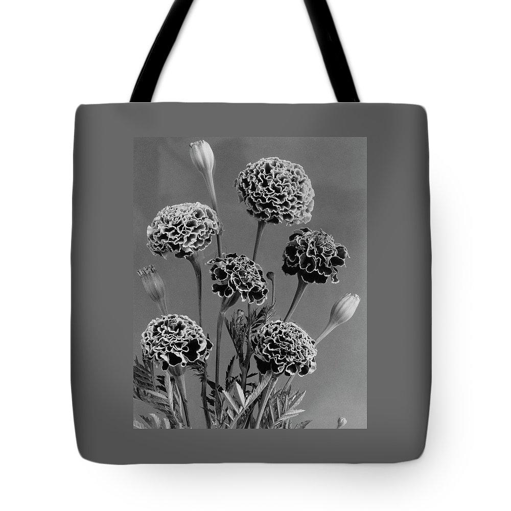 Flowers Tote Bag featuring the photograph Dwarf Monarch Marigolds by J. Horace McFarland