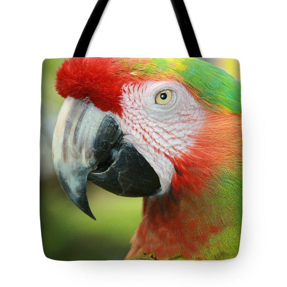 Aloha Tote Bag featuring the photograph Each New Dawn by Sharon Mau
