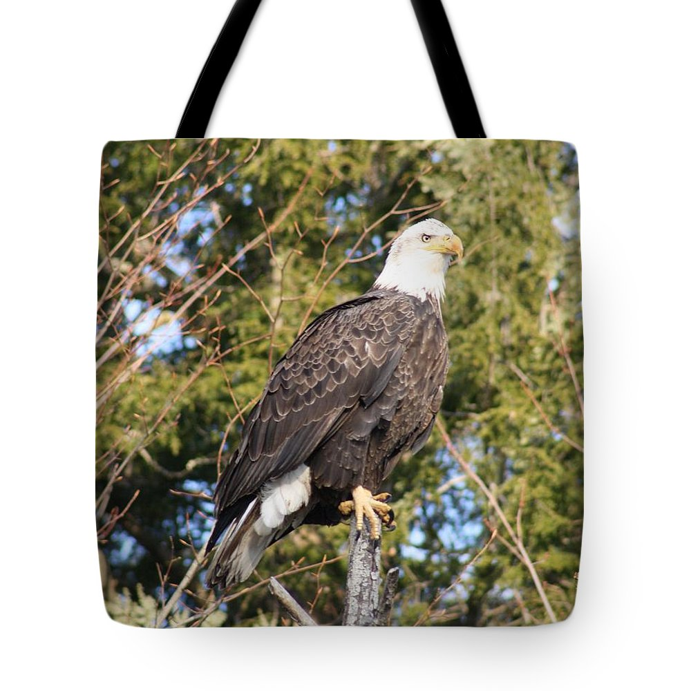 Eagle Tote Bag featuring the photograph Eagle 1979 by Joseph Marquis