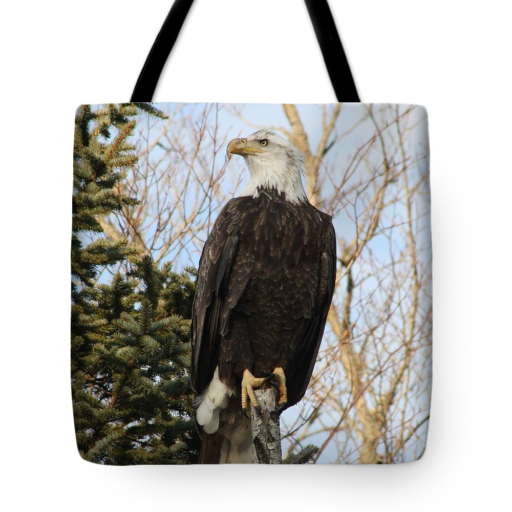 Eagle Tote Bag featuring the photograph Eagle 1991 by Joseph Marquis