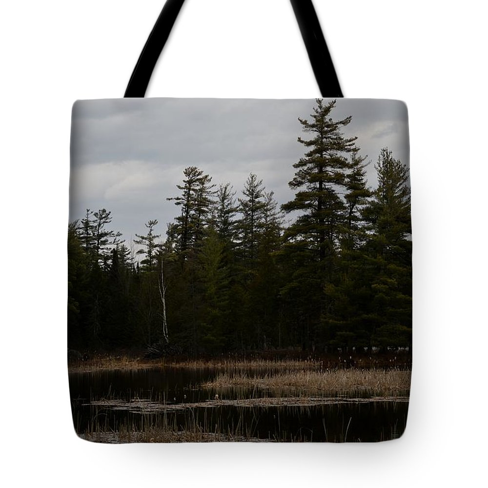 Bald Eagle Tote Bag featuring the photograph Eagle Home by Thomas Phillips