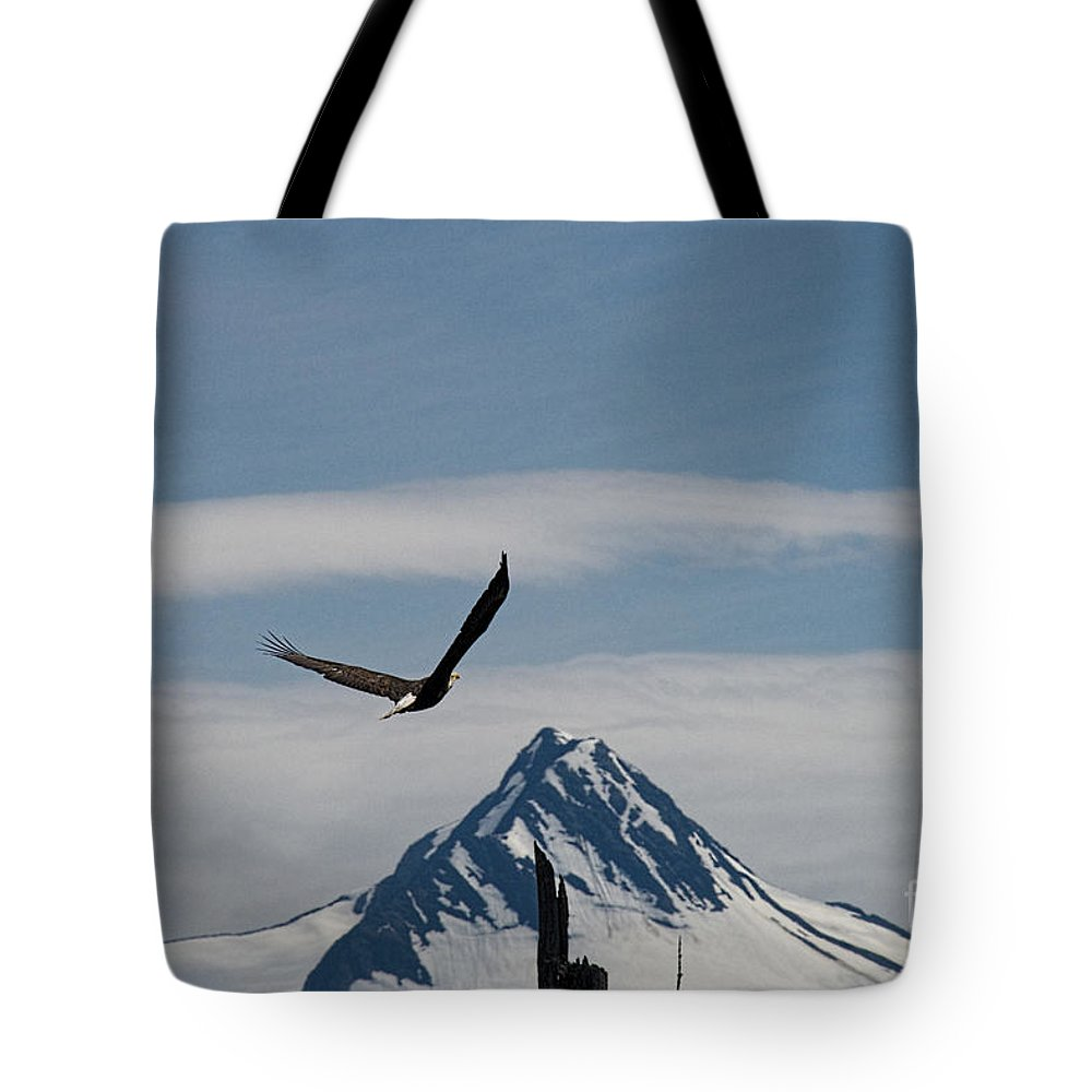 Eagle Tote Bag featuring the photograph Eagle Landing by David Arment