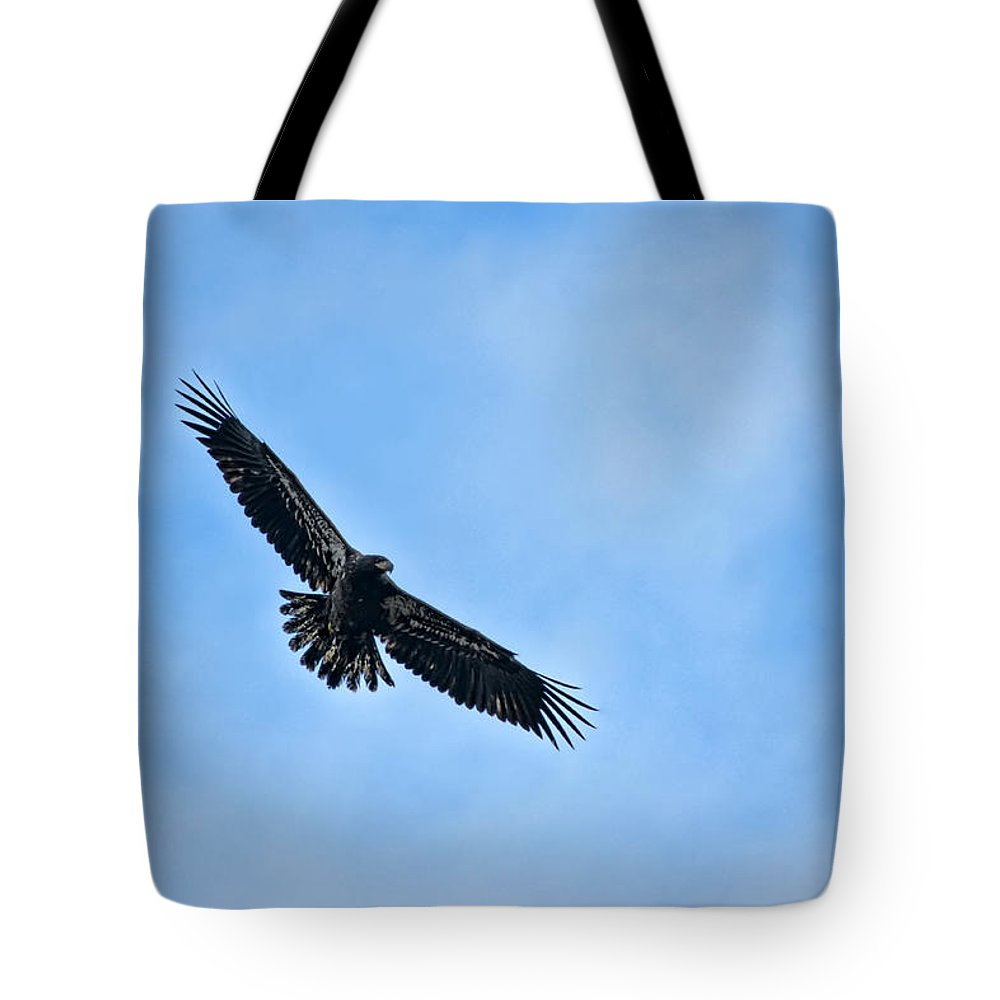 Squaw Creek Tote Bag featuring the photograph Eagle Soaring by Alan Hutchins