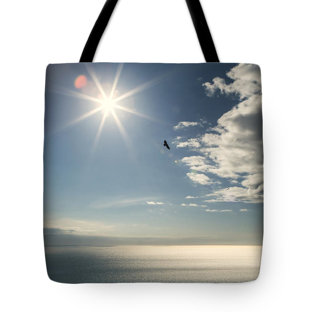 Bald Eagle Tote Bag featuring the photograph Eagles And The Sea by Michele Cornelius
