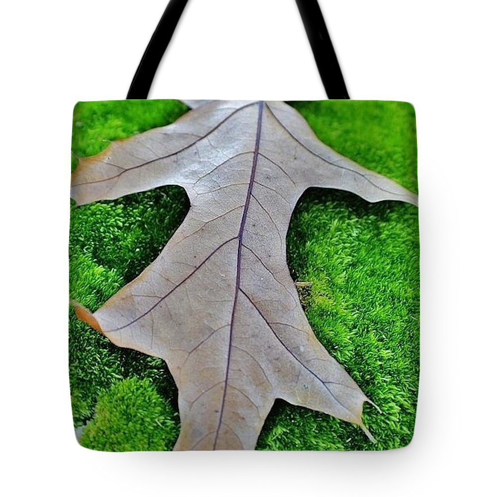 Tote Bag featuring the photograph Early Autumn by Chet B Simpson