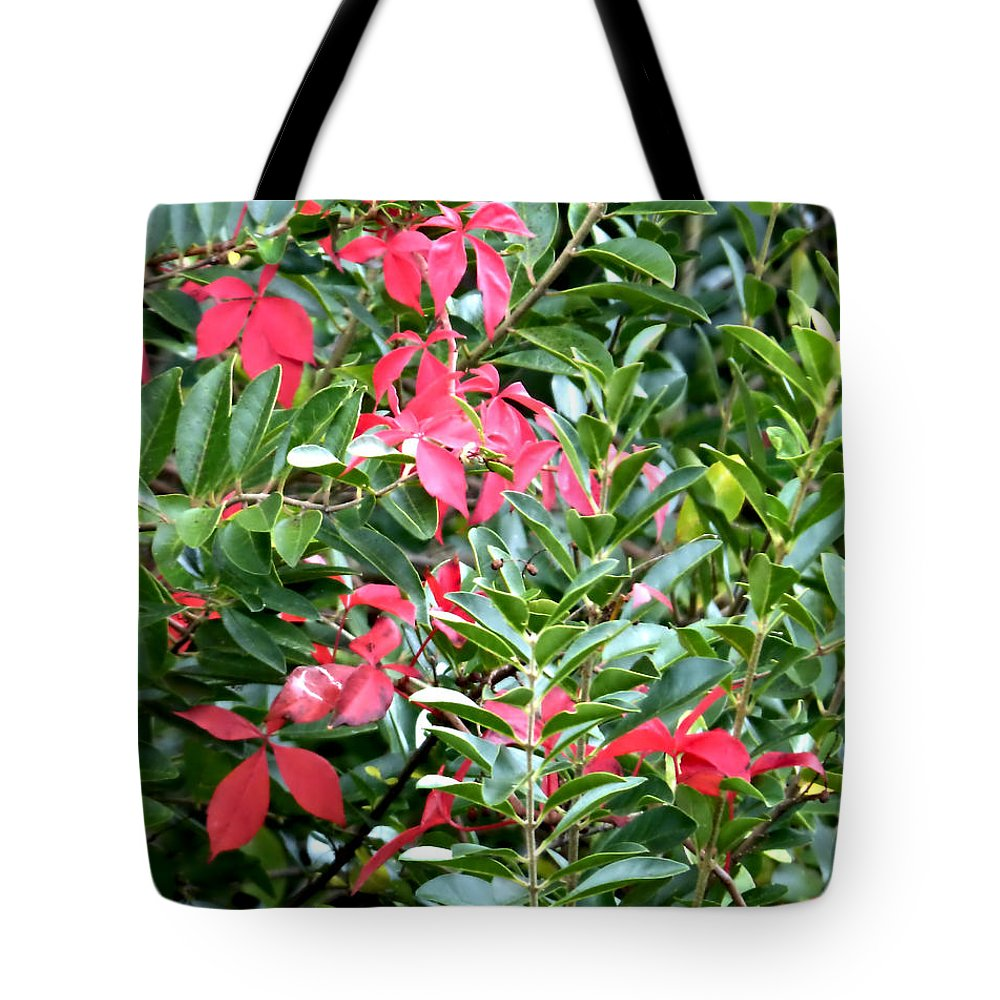 Park Tote Bag featuring the photograph Early Autumn by Pete Trenholm