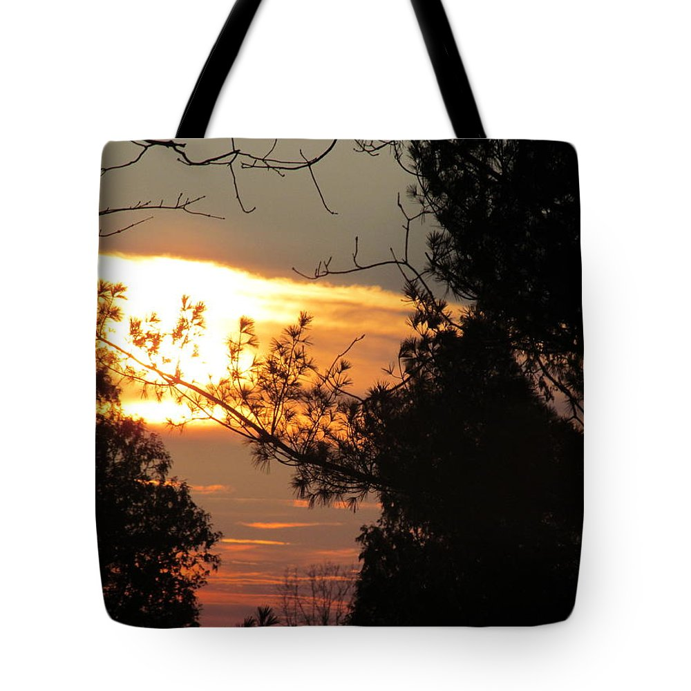 Sun Tote Bag featuring the photograph Early Feb 9 2013 Sunset by Tina M Wenger