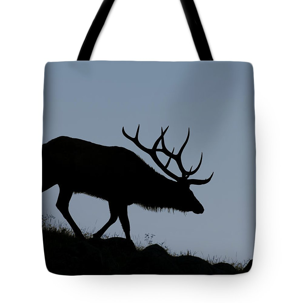 Early Morning Tote Bag featuring the photograph Early Morning Bull Elk by Gary Langley